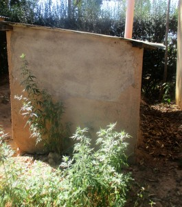 The Water Project : 14-kenya4641-condemned-latrines
