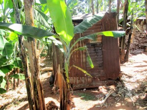The Water Project : 17-kenya4703-traditional-latrine