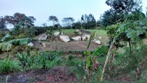 The Water Project : 7-kenya4697-landscape