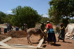 The Water Project : 15-kenya4756-sand-dam-construction