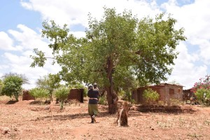 The Water Project : 11-kenya4758-household-2