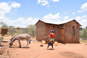 The Water Project : 2-kenya4758-household-1