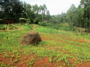 The Water Project : 20-kenya4706-community-landscape