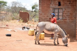 The Water Project : 4-kenya4758-household-1