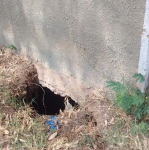 The Water Project : 24-kenya4661-a-hole-in-one-of-the-latrines