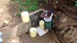 The Water Project : 31-kenya4701-protected-spring