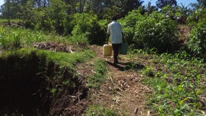 The Water Project : 40-kenya4700-protected-spring