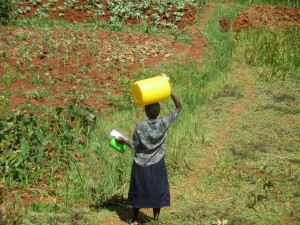 The Water Project : 5-kenya4715-carrying-water