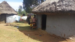 The Water Project : 6-kenya4727-miriam-and-son-at-home