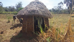 The Water Project : 7-kenya4727-latrine