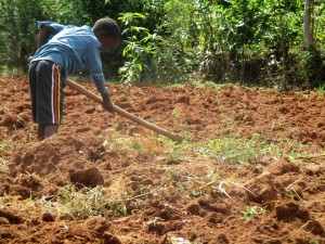 The Water Project : 9-kenya4715-children-help-their-mothers-on-farms