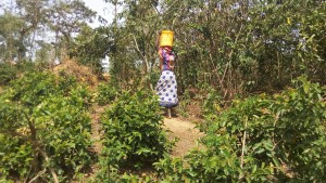 The Water Project : 9-kenya4717-carrying-water