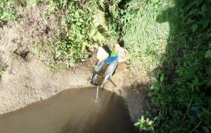 The Water Project : samsung-camera-pictures-573